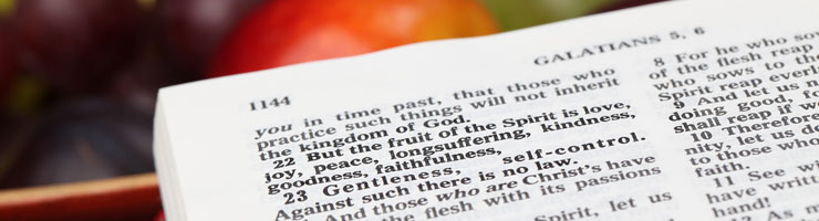 fruit of the spirit - header